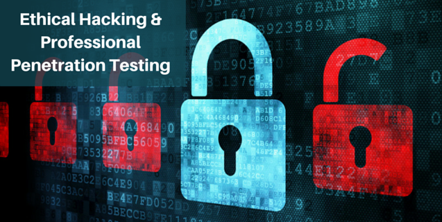 how-to-become-a-professional-penetration-testing-expert-onlc